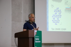 IBS Conference on Quantum Nanoscience - Day 1
